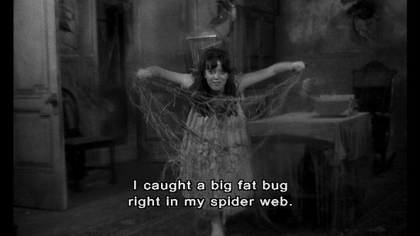 spiderbaby1