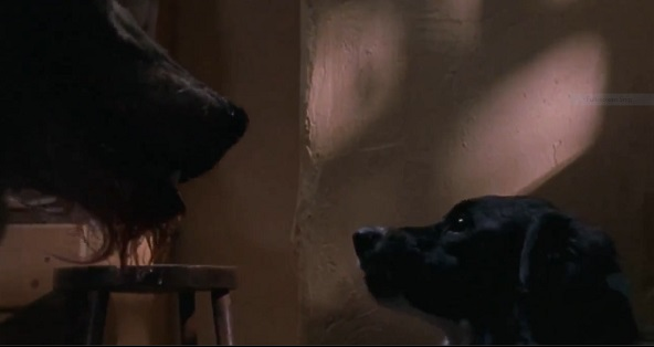 dogsoldiers3
